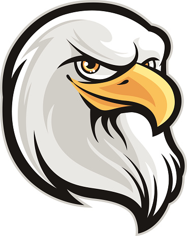 Eagle Head vector art .