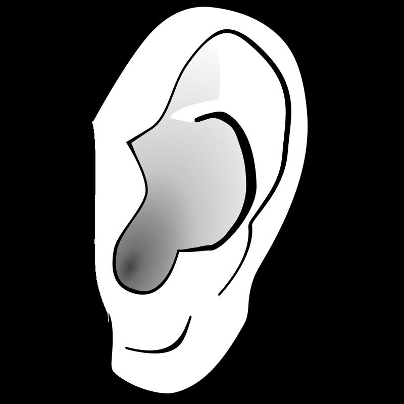 Ear Clipart-ear clipart-5
