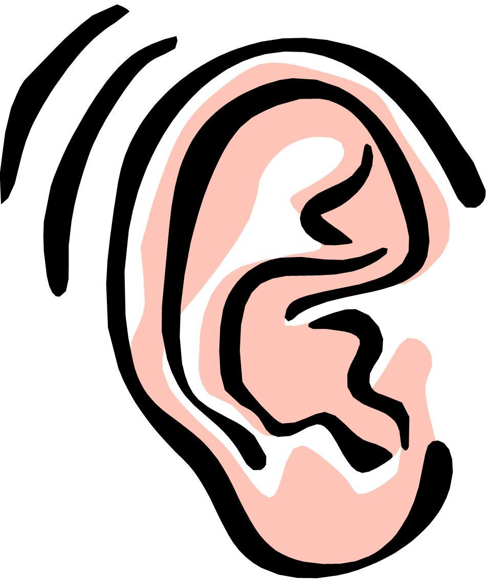 ear clipart - Clip Art Ears