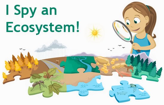 Ecosystem Clipart