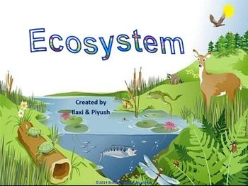 Ecosystem: Unit Pack with .