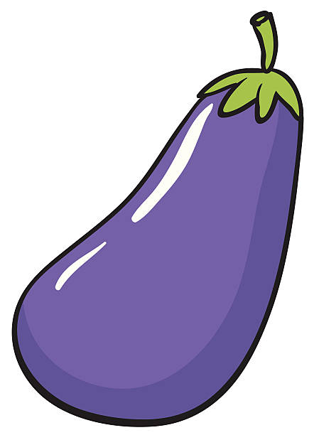 brinjal vector art illustration