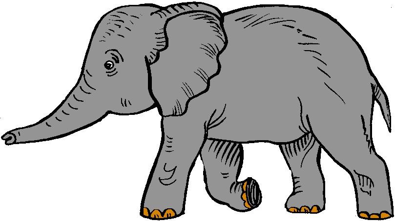 Elephant Clip Art - clipartall