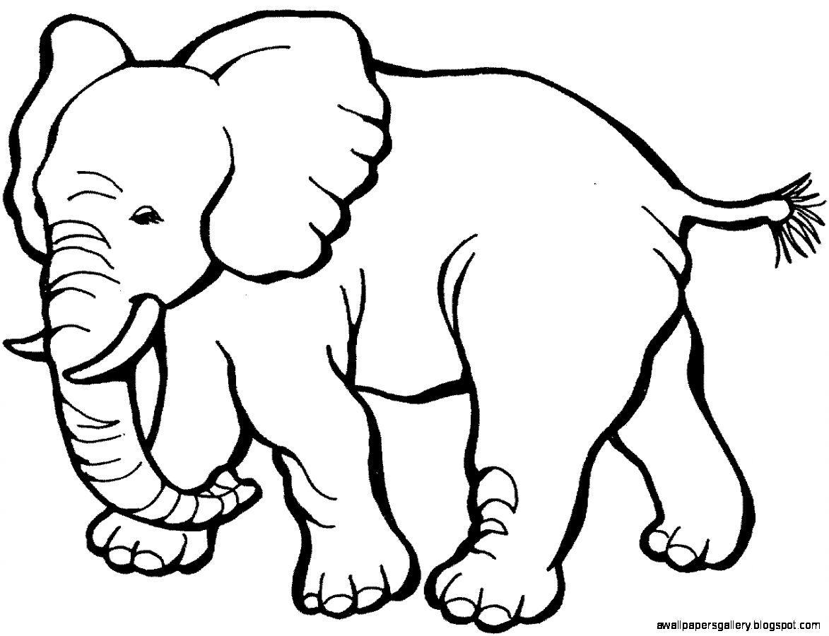 Elephant Clipart Black And White Clipart-Elephant Clipart Black And White Clipart Best-10
