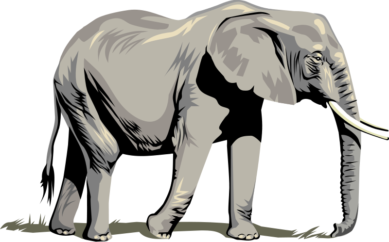 Vector Elephants - Clipart Library-Vector Elephants - Clipart library-16