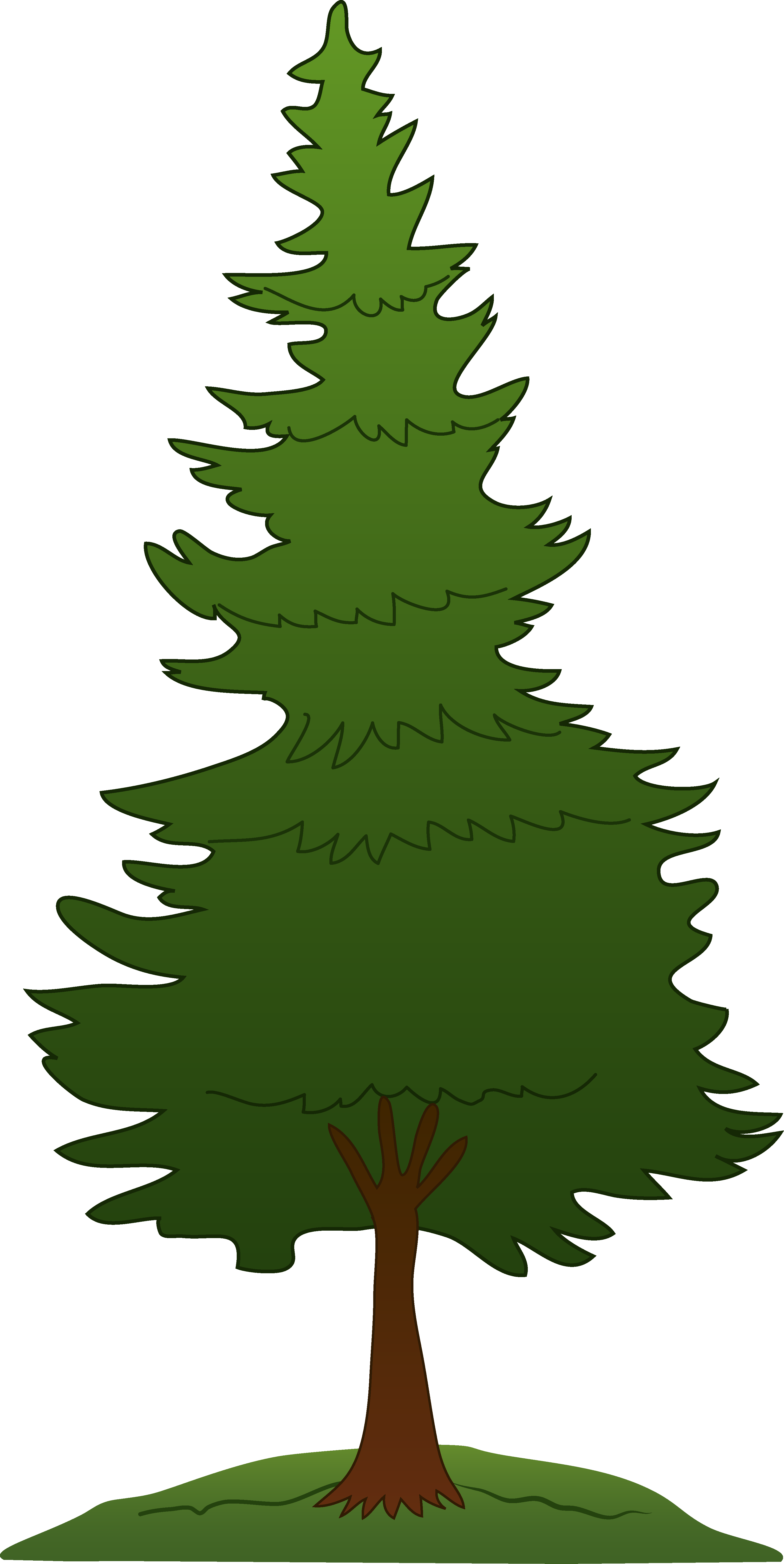 Evergreen Tree Clip Art. Green Pine Tree Design - Free .