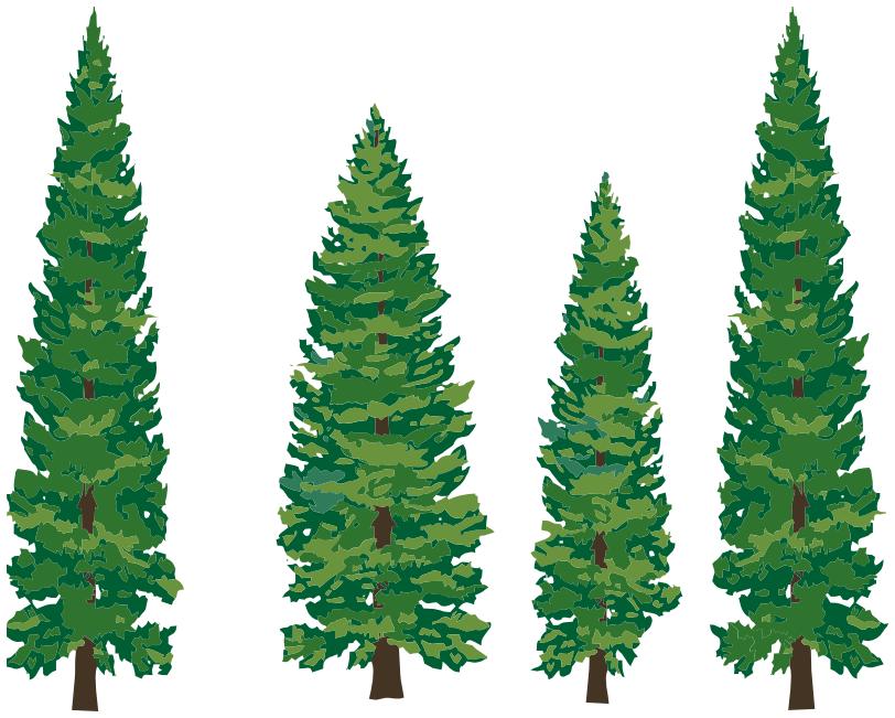 Evergreen Trees Clipart-Evergreen Trees Clipart-5