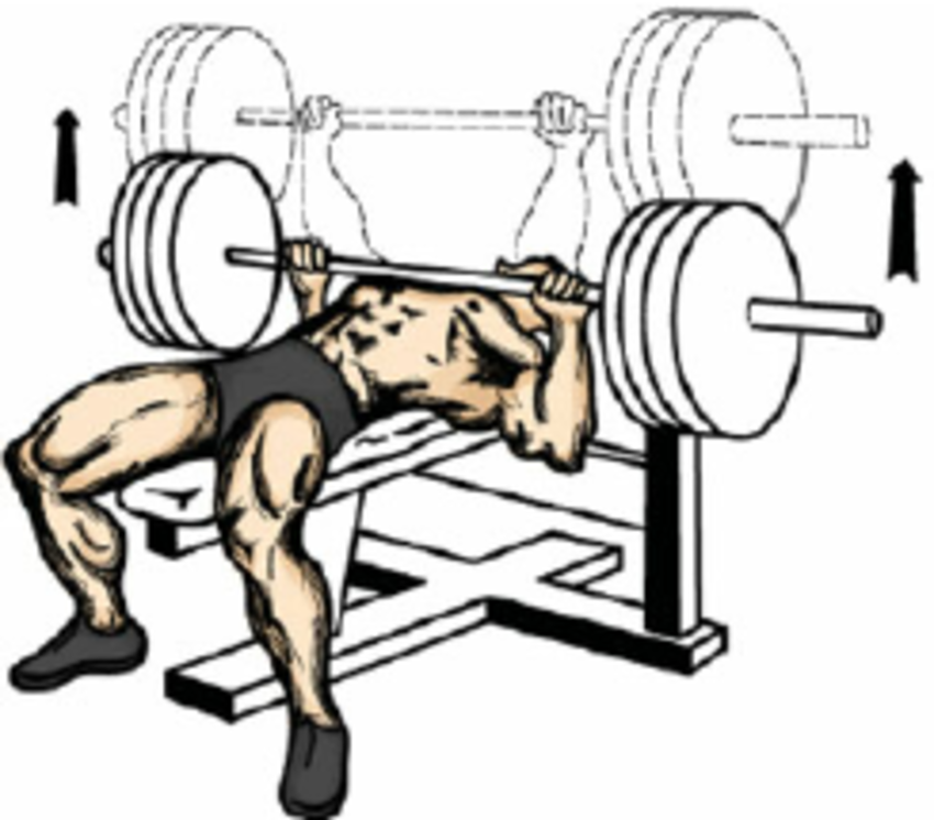 Exercise Bench Clipart