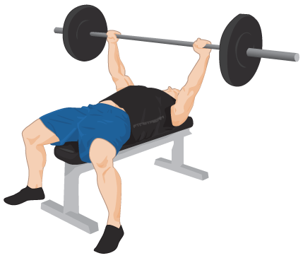 Exercise Bench Png PNG Image-Exercise Bench Png PNG Image-9