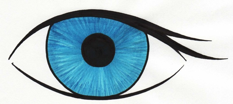 Eyeball clip art eye clipart
