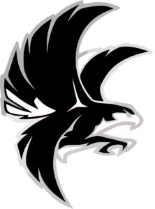 Falcon Clipart-Clipartlook.com-222