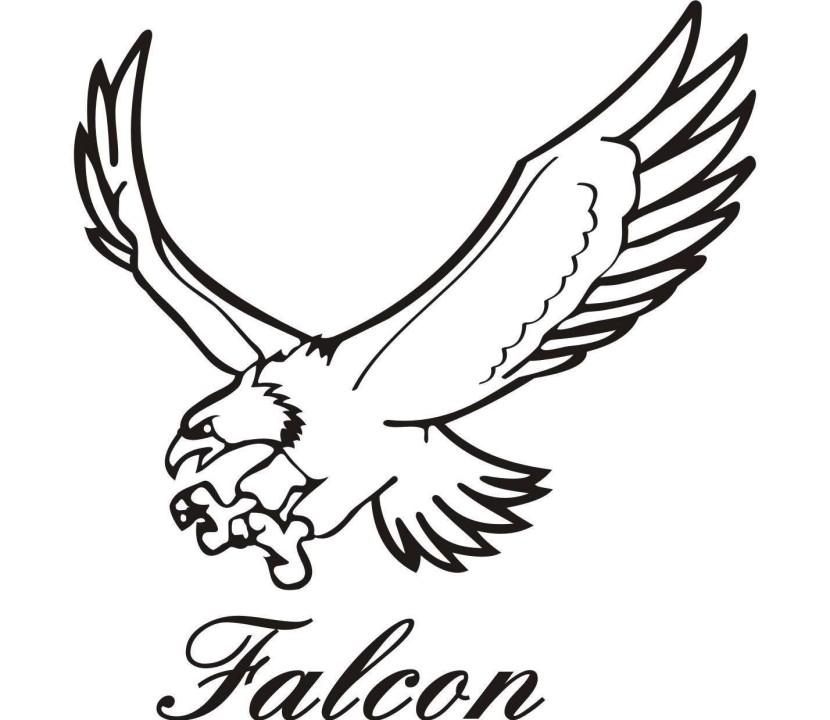 Falcon clip art image free clipart image-Falcon clip art image free clipart image 2 image-1