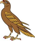 Falcon Clipart-Falcon Clipart-13