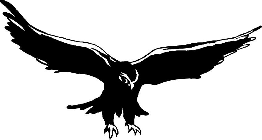 Falcon Clipart - ClipArt Best