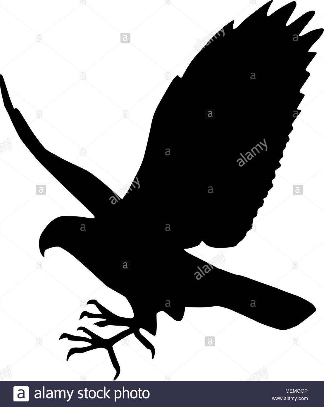 Falcon - Retro Clipart Illustration - St-Falcon - Retro Clipart Illustration - Stock Image-9