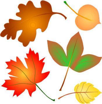 Fall Background Clipart-fall background clipart-5