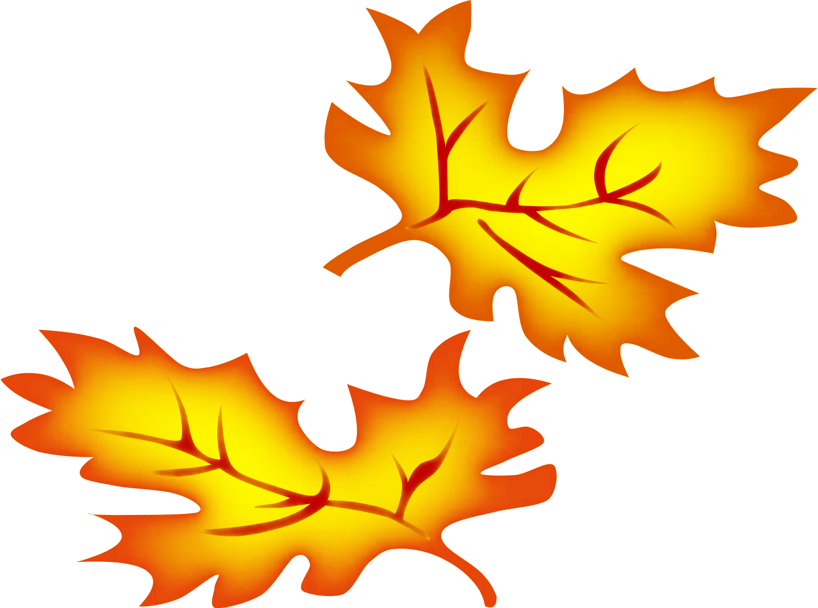 fall leaf clipart