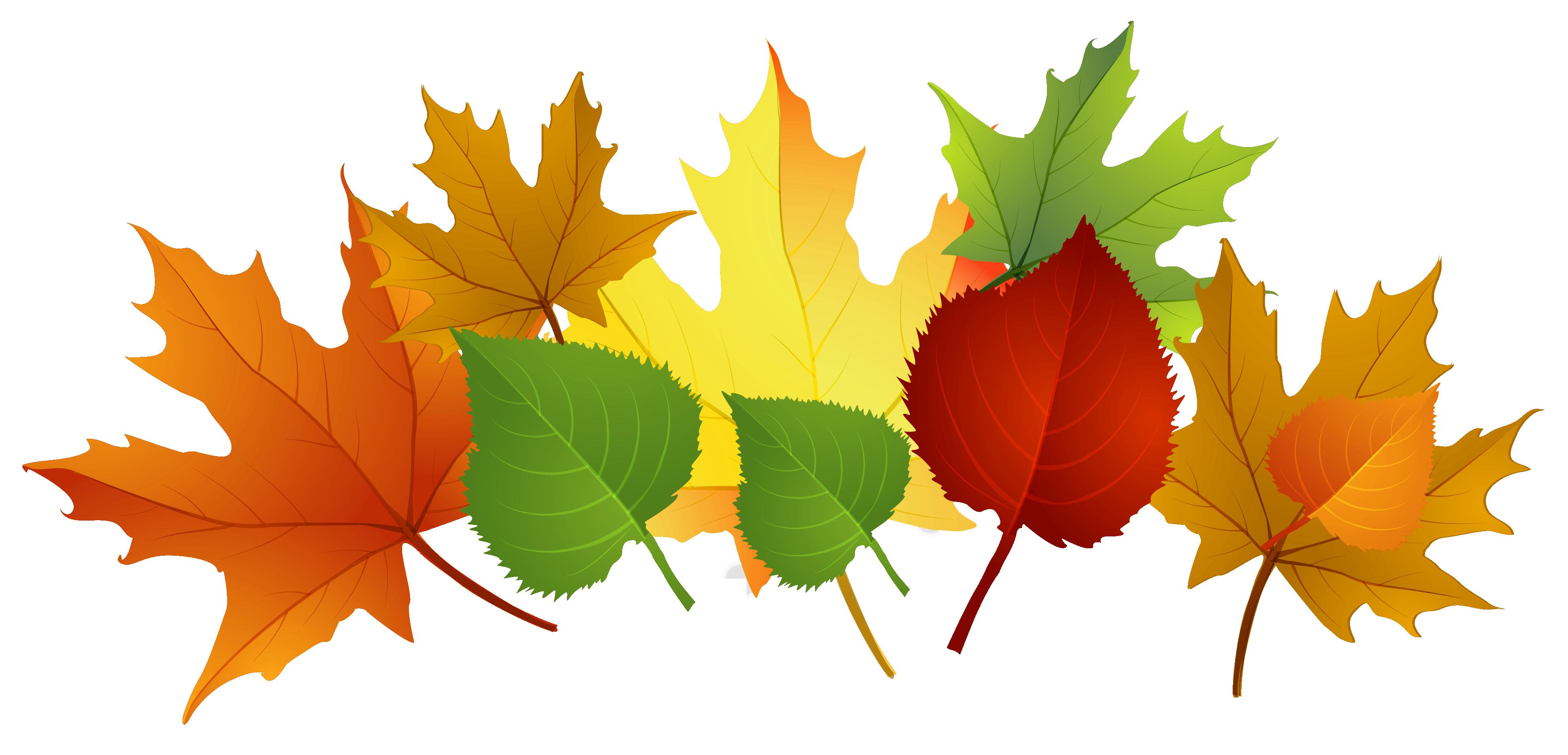Fall Clip Art Images Free Cli - Autumn Clip Art