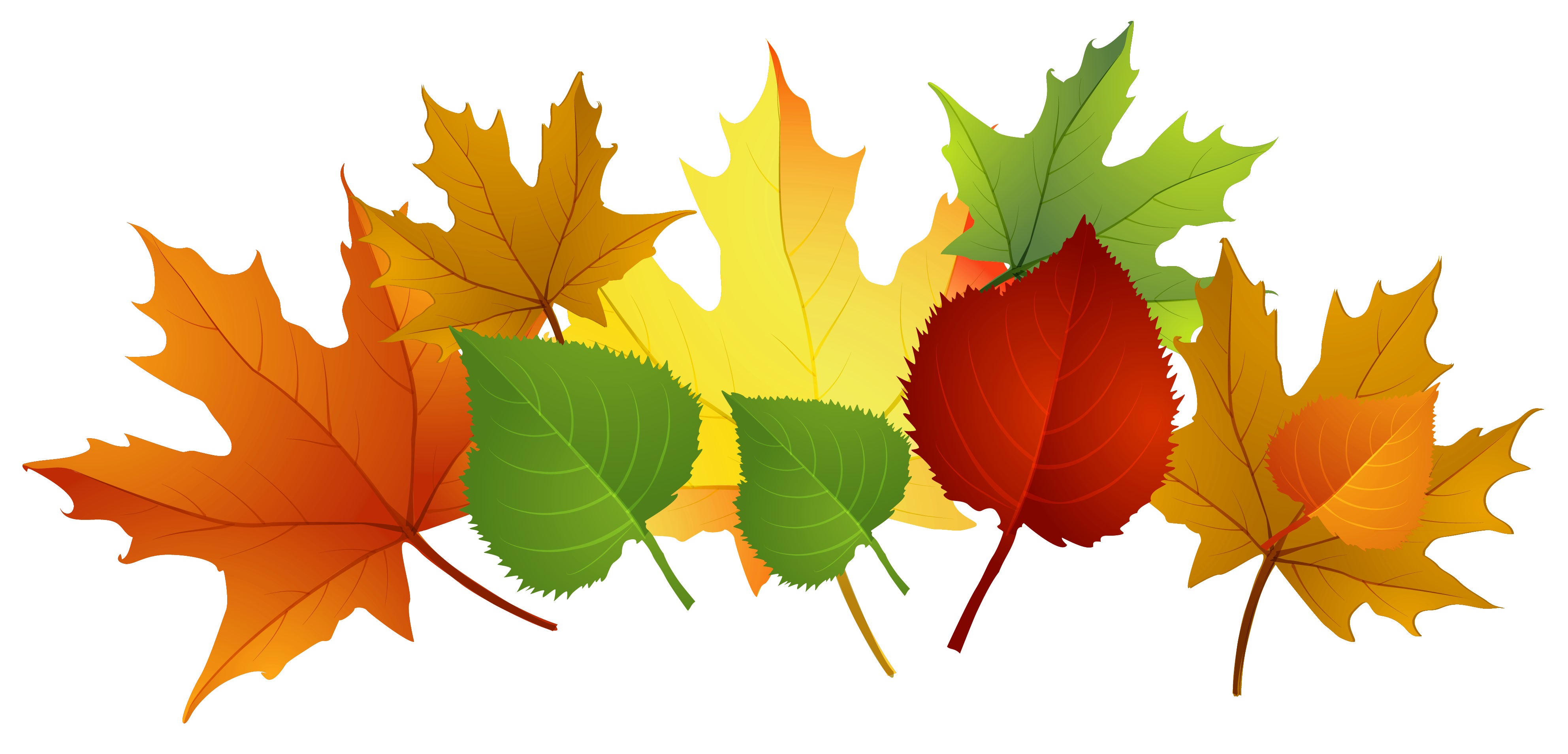 Fall Clip Art Images Free Cli - Autumn Leaves Clip Art