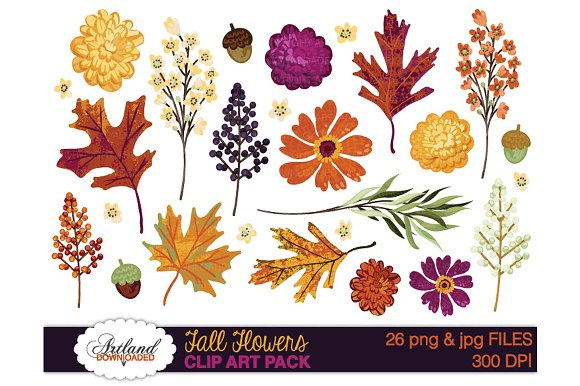 Fall Flowers Clipart Pack - Illustrations