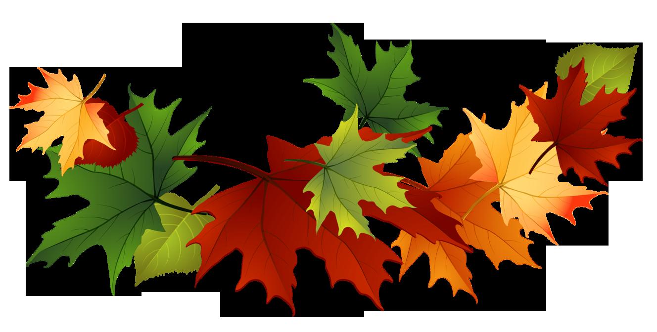 Fall Leaves Clip Art Free Fall Transpare-Fall Leaves Clip Art Free Fall Transparent Leaves-14