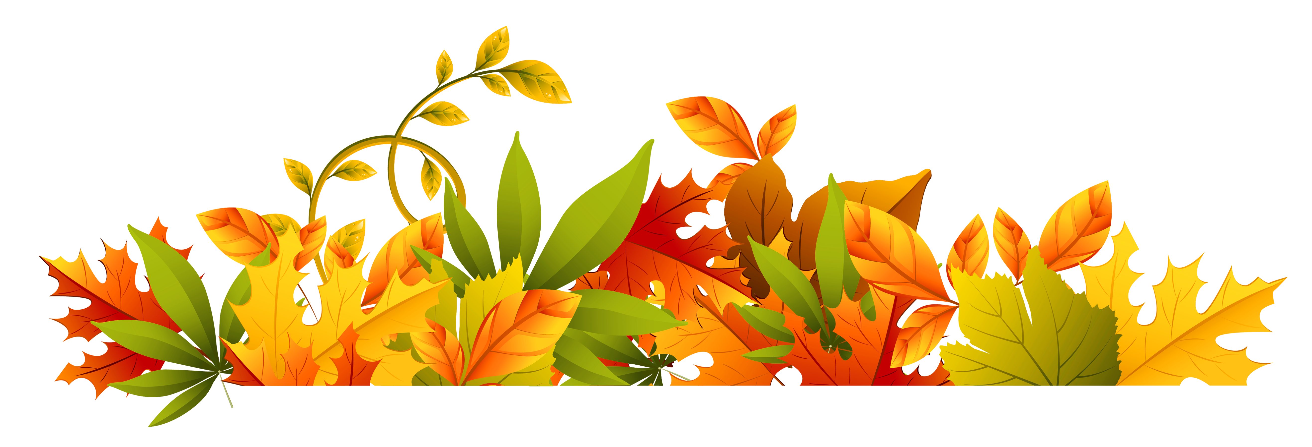 Fall Leaves Clip Art Free Fall Transparent Leaves. Free Fall Borders Cliparts Co