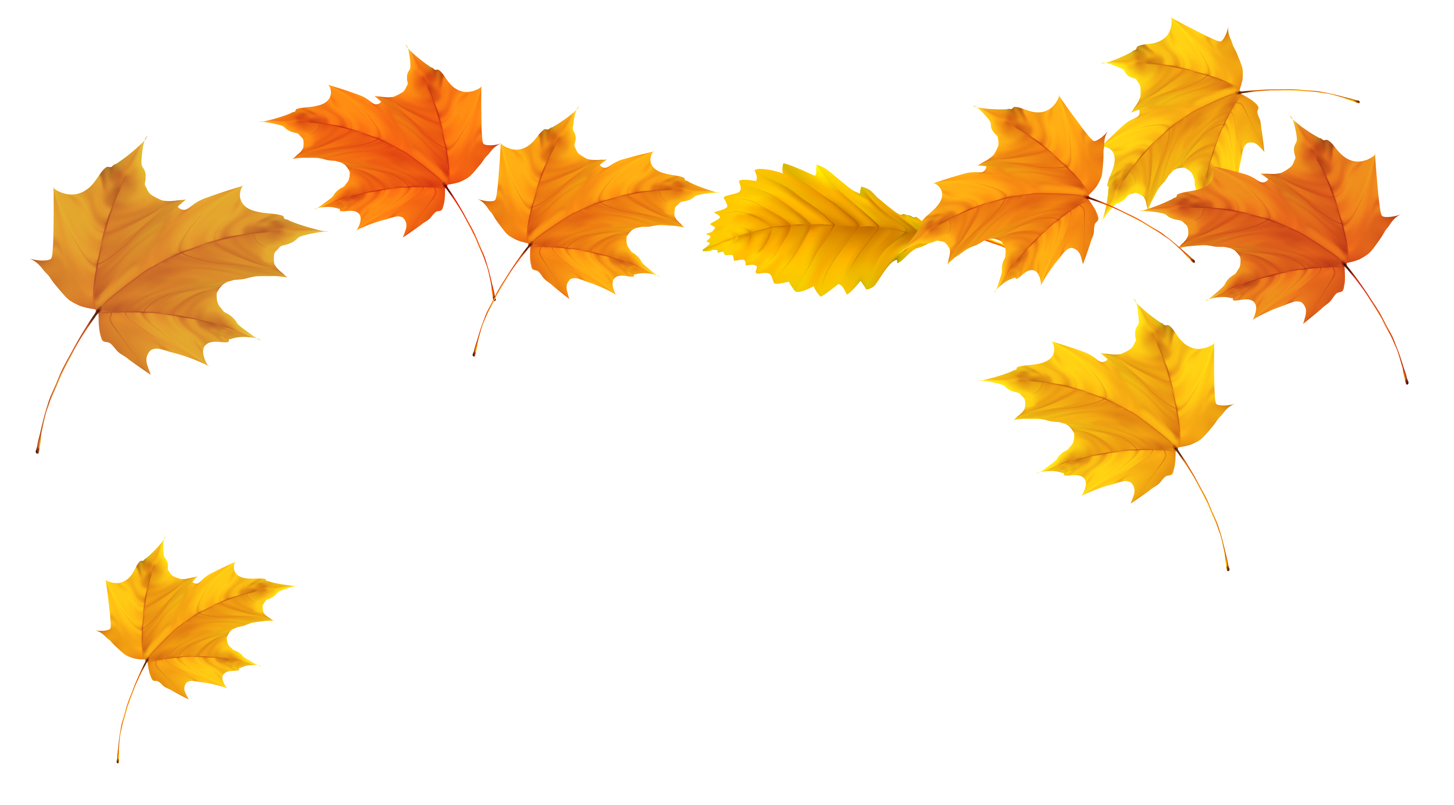Fall leaves clipart clipartcow