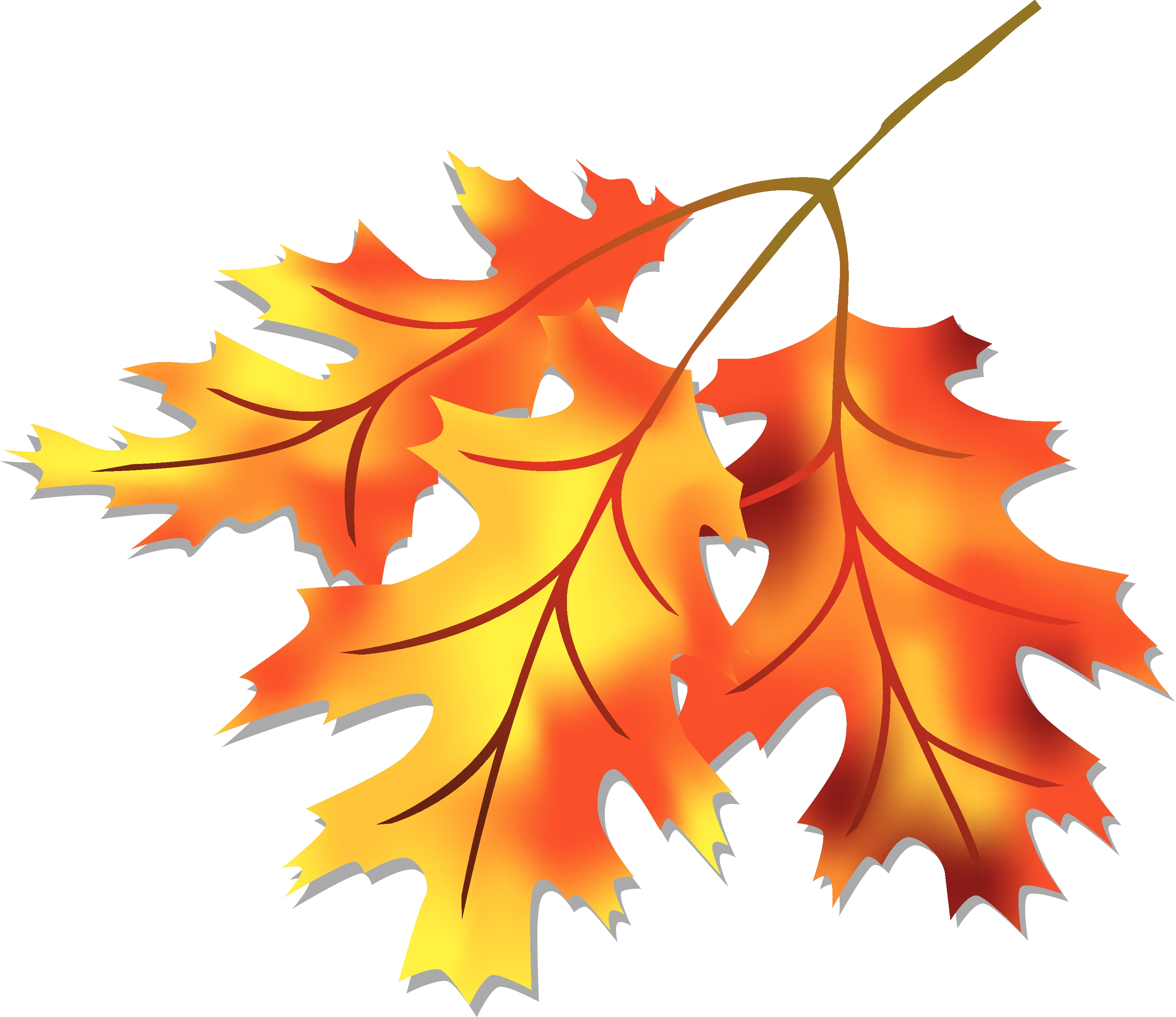Fall Leaves Clipart Free .-Fall leaves clipart free .-12