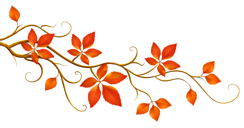 Fall Leaves Fall Autumn Free .-Fall leaves fall autumn free .-15