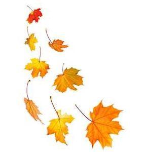 Fall leaves fall clip art autumn clip art leaves clip art clipart 10