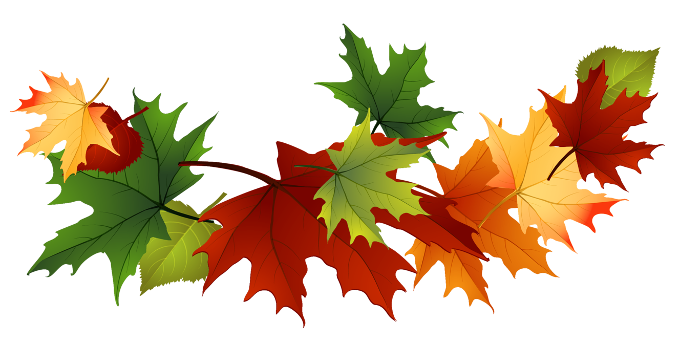 Fall leaves fall clip art autumn clip art leaves clip art clipart 3