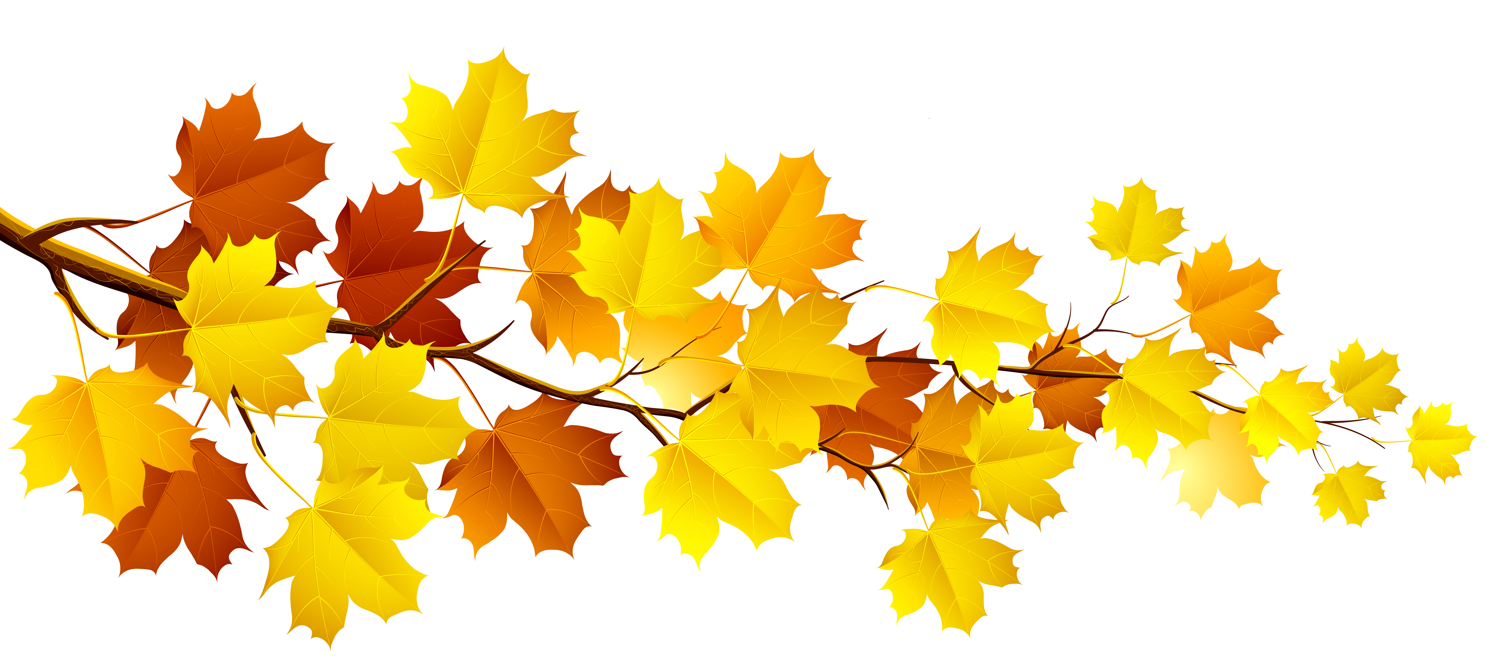 Fall leaves fall clip art aut - Free Clip Art Fall Leaves