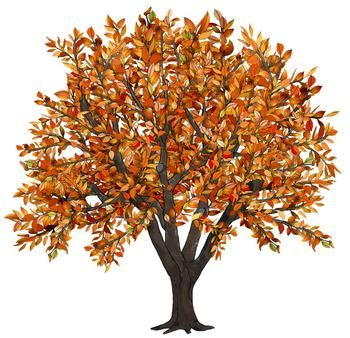 Fall Tree Clipart-Fall Tree Clipart-8
