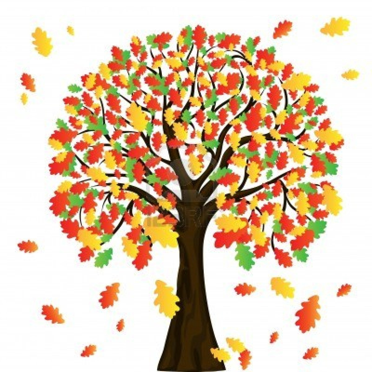 Fall Tree Clipart-Fall Tree Clipart-11