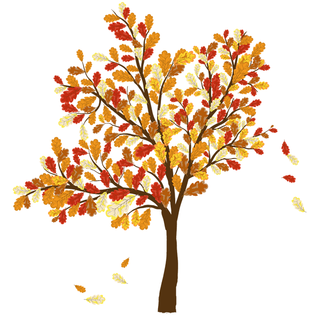 Fall Trees And Leaves Clip Art Picture O-Fall Trees And Leaves Clip Art Picture Of Tree With Leaves-13