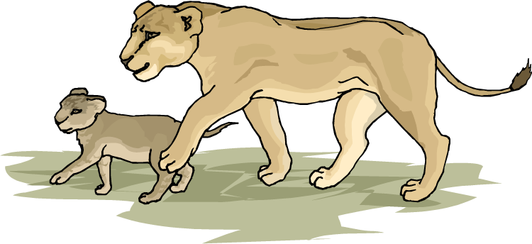 Family Lioness Clipart