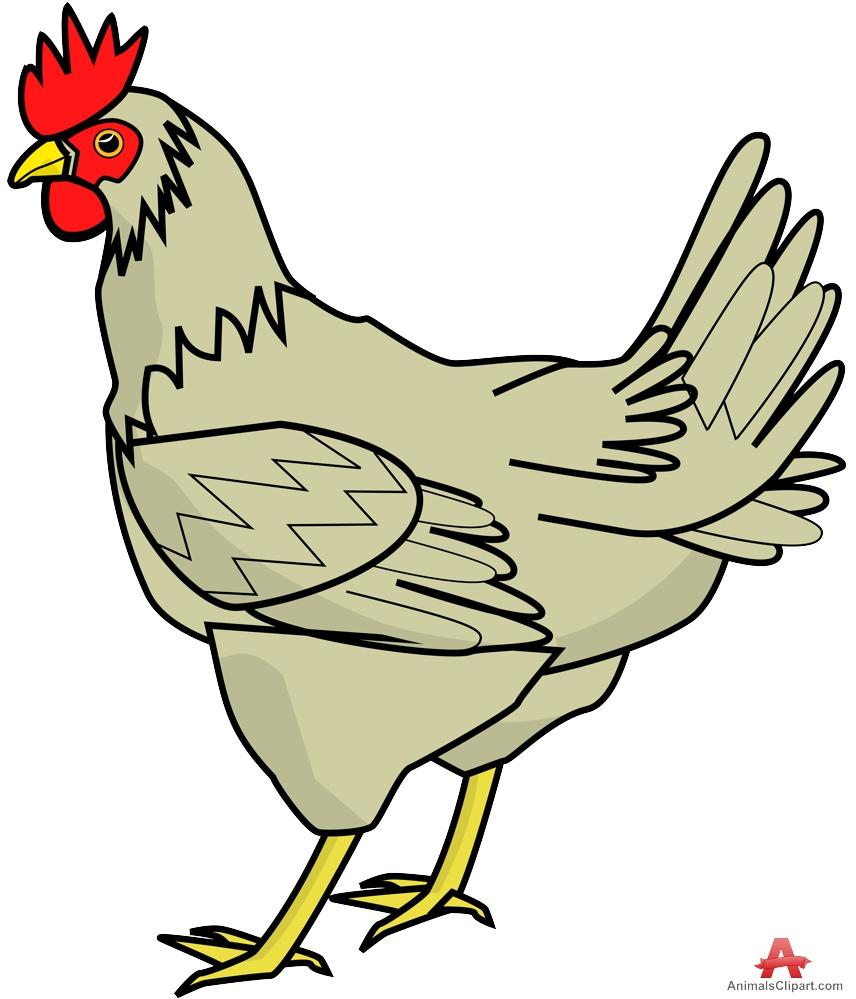 Farm Chicken Clipart-Farm Chicken Clipart-14