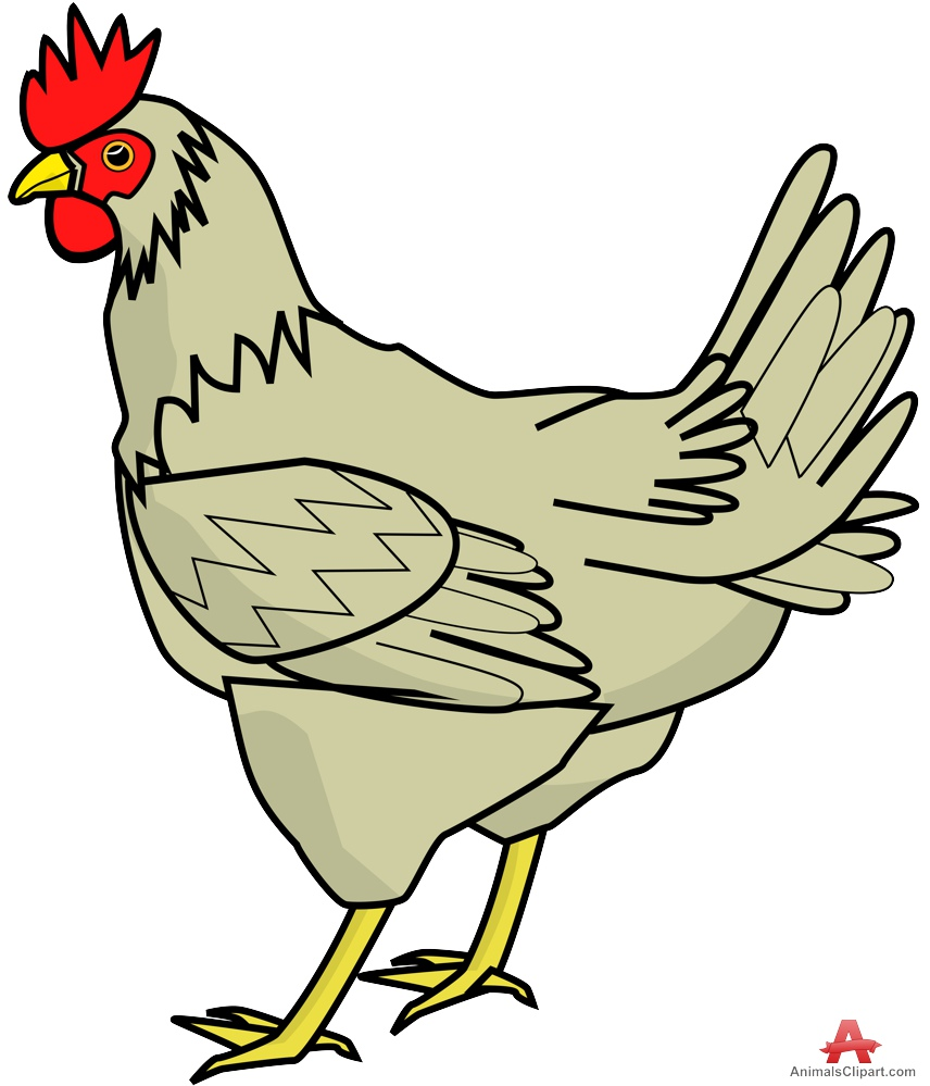 Farm Chicken Clipart-Farm Chicken Clipart-16