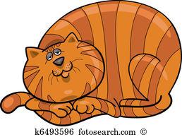 Fat red cat