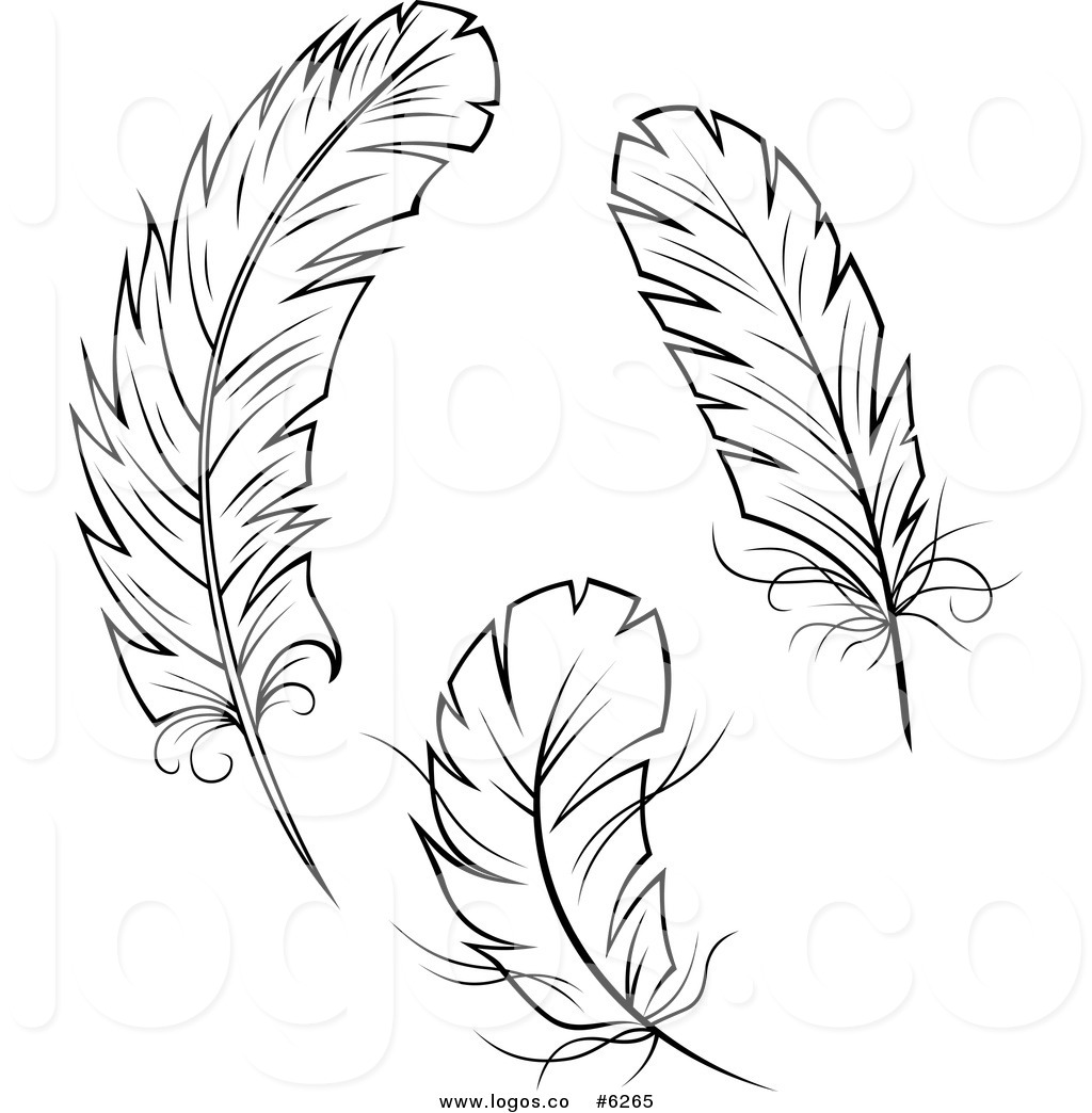 Feather clip art to download clipartcow