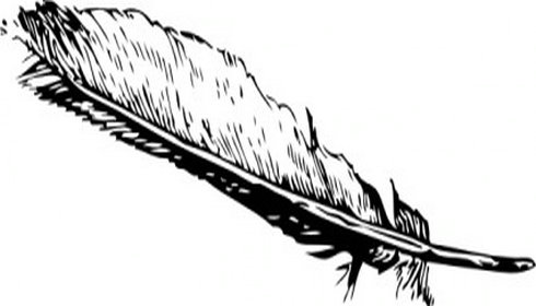 Feather clipart free clipart .