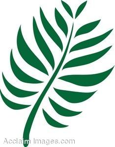 Fern Leaf Clip Art - Fern Clipart
