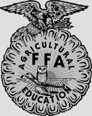 Ffa-Ffa-8