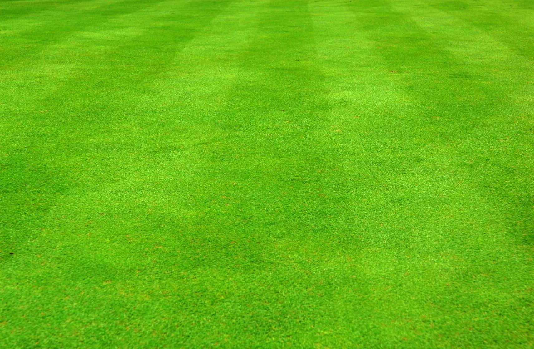 39697a0673e7ef0212a5d18a2f7c52b6_grass-field-clipart-dromhfj-soccer-grass- field-clipart_1712-1121