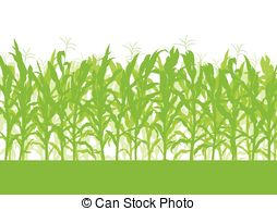 . ClipartLook.com Corn field vector background ecology green concept