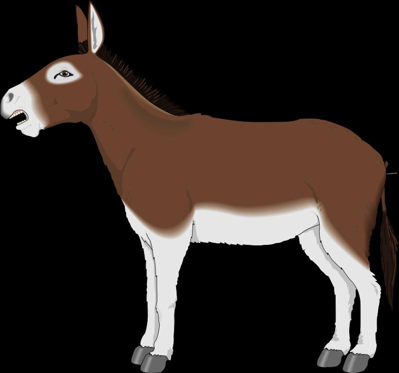 File Donkey Clipart Wikimedia Commons u0026middot; Vector Donkey Donkey Free Vectors Download 4vector