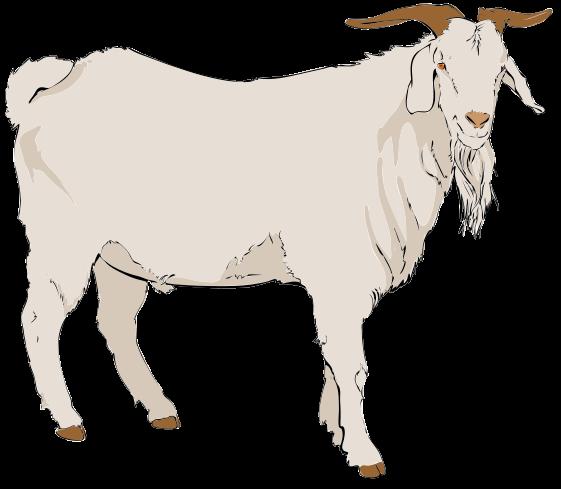 File:Goat clipart 01.svg