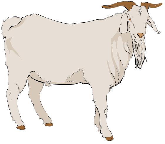 File:Goat clipart 01.svg
