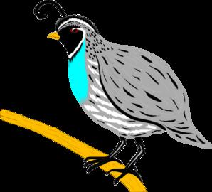 Finch Clipart-finch clipart-5