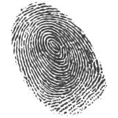 Fingerprint Clip Art 91 on ... Available as a PRINT